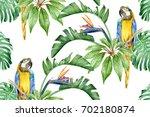 big yellow macaw parrot ...   Shutterstock . vector #702180874