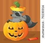halloween raccoon scavenger  ... | Shutterstock .eps vector #70230316