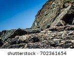 sea  seagull | Shutterstock . vector #702361654