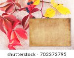 autumn background with natural... | Shutterstock . vector #702373795