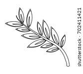 olive branch leaf peace flora... | Shutterstock .eps vector #702411421