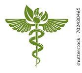 caduceus symbol composed with... | Shutterstock . vector #702430465