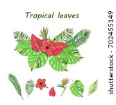 floral paradise hand drawn...   Shutterstock .eps vector #702455149