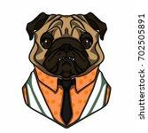 pug  dog vector in vest... | Shutterstock .eps vector #702505891