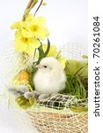 the easter basket with the... | Shutterstock . vector #70261084