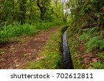 beautiful forest trail in... | Shutterstock . vector #702612811
