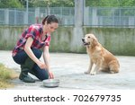 animal shelter volunteer... | Shutterstock . vector #702679735