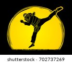 taekwondo jump kick action with ... | Shutterstock .eps vector #702737269