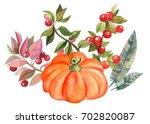 watercolor autumn composition... | Shutterstock . vector #702820087