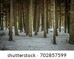 snowy forest landscape | Shutterstock . vector #702857599