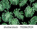 tropical leaves  monstera on a... | Shutterstock . vector #702862924