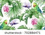 the green parrot  tropical... | Shutterstock . vector #702886471