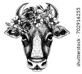 cow portrait with floral wreath.... | Shutterstock .eps vector #702916255