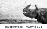 rhino | Shutterstock . vector #702945121