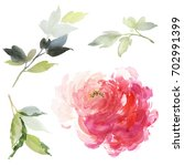 set of watercolor large peony... | Shutterstock . vector #702991399