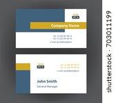 vector professional designer... | Shutterstock .eps vector #703011199