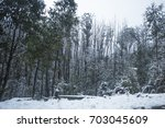 snow on roads and forest on... | Shutterstock . vector #703045609