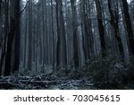 snow on roads and forest on... | Shutterstock . vector #703045615