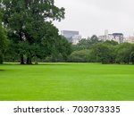 japan shinjuku gyoen rainy day  | Shutterstock . vector #703073335
