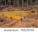 gold mining place in guyana.... | Shutterstock . vector #703153705