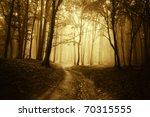 horror scene with a road... | Shutterstock . vector #70315555