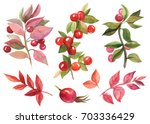 painting watercolor. autumn set ... | Shutterstock . vector #703336429