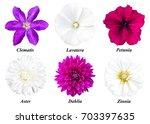 Set Of Six Colors  Purple...