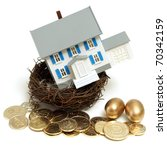 A house in a nest with golden eggs and coins for many conceptual ideas. - stock photo