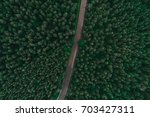 asphalted road surrounded by... | Shutterstock . vector #703427311