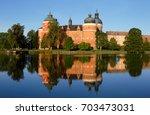 the royal gripsholm castle... | Shutterstock . vector #703473031