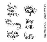 evening greeting. lettering... | Shutterstock .eps vector #703529614
