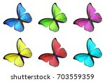 set of six colorful butterfly... | Shutterstock . vector #703559359