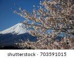 sakura flower and fuji mountain | Shutterstock . vector #703591015