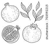ripe pomegranate on white... | Shutterstock .eps vector #703592215