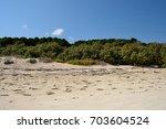 moucha masakali beach  djibouti ... | Shutterstock . vector #703604524