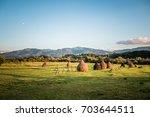 hay land | Shutterstock . vector #703644511