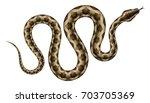 Brown Python Vector...