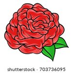 flower rose  red buds and green ... | Shutterstock .eps vector #703736095