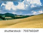 rural landscape at summertime... | Shutterstock . vector #703760269