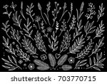 hand drawn set of tree branches ... | Shutterstock .eps vector #703770715