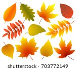 two abstract eco icons with... | Shutterstock . vector #703772149