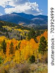 Autumn in the mountains of Colorado always means stunning colors from the changing leaves on aspen and other deciduous trees, shrubs and ground cover.