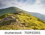 carpathian panorama  polonyna... | Shutterstock . vector #703932001