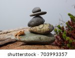 frog on a rock stack | Shutterstock . vector #703993357