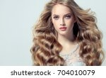 blonde fashion  girl with long  ... | Shutterstock . vector #704010079