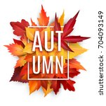 autumn leaf poster. orange... | Shutterstock .eps vector #704093149