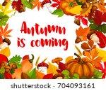 autumn nature frame of fall... | Shutterstock .eps vector #704093161