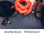 autumn female outfit. set of... | Shutterstock . vector #704101615