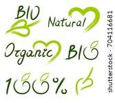 vector illustration of green... | Shutterstock .eps vector #704116681