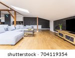 television on long wooden... | Shutterstock . vector #704119354
